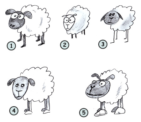 How to draw a cartoon sheep step 4