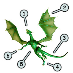 How to draw dragons step 1