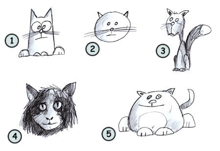 How to draw a cat step 4