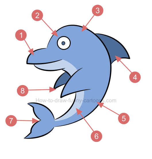How to draw a 3D dolphin