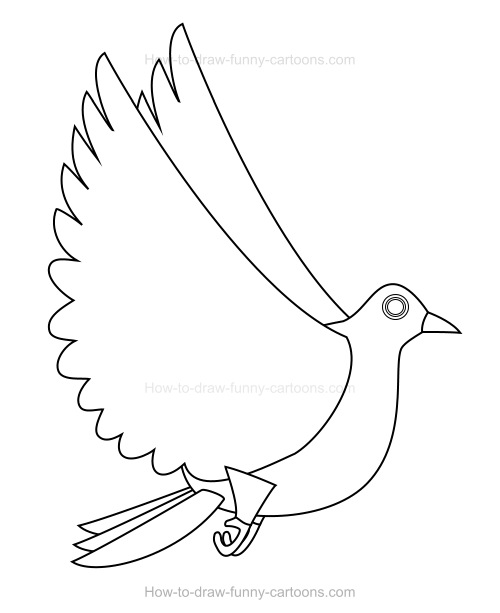 How to Draw A Cartoon Dove