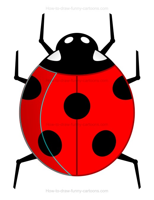 How to Draw A Cartoon Ladybug
