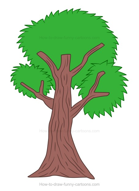 How To Draw A Cartoon Tree Lipper international acacia tree bark footed server for cheese, crackers, and hors mini assorted size natural color tree bark wood slices round log discs for arts. how to draw a cartoon tree