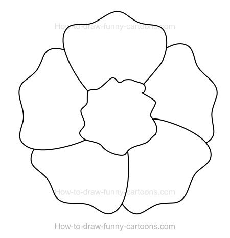 How to draw a poppy for How to draw a hard flower