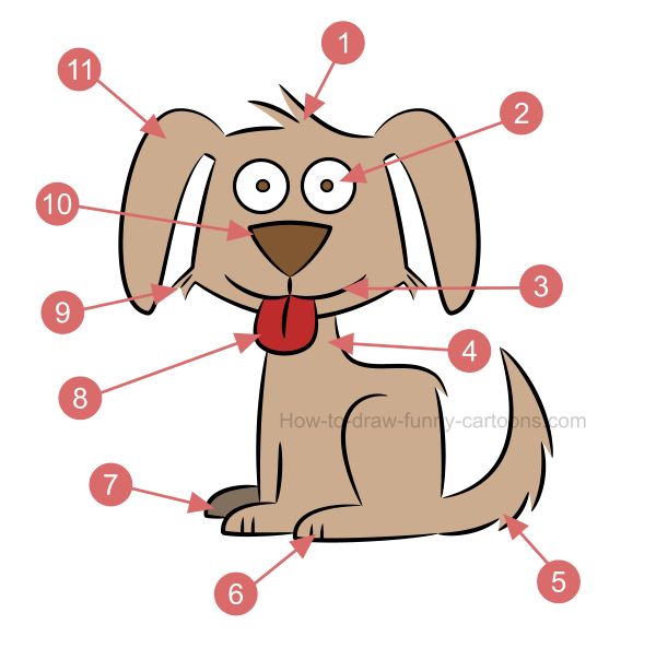 How to draw an illustration of a dog