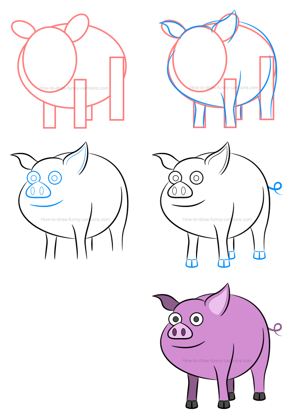 How to draw an illustration of a pig