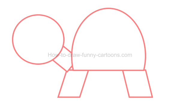 How to draw an illustration of a turtle