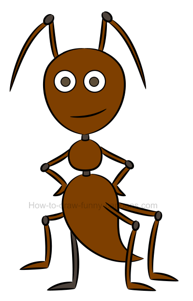 How to draw an illustration of an ant