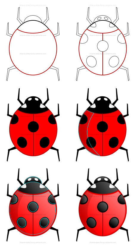 Learn how to draw misc images - ladybug