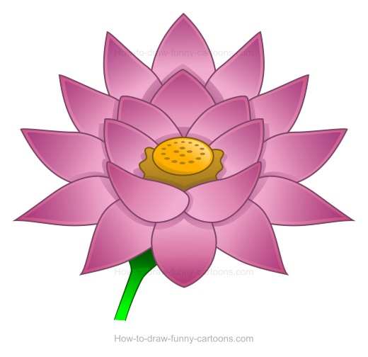 How to create a  lotus flower drawing
