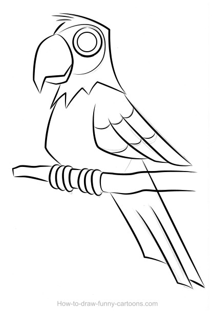 Parrot Drawing (Sketching + Vector