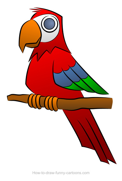 Parrot Drawing Sketching Vector