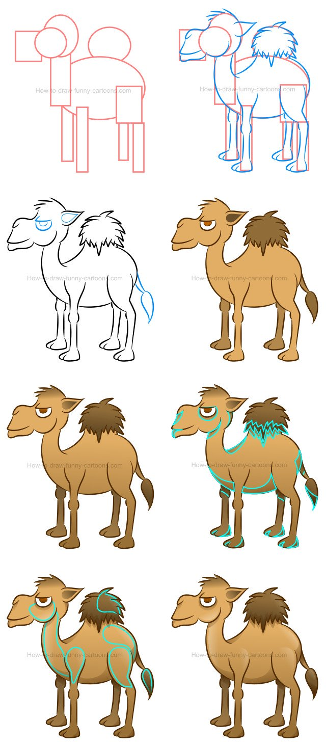 How to draw a camel cartoon illustration