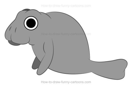 How to Draw A Cartoon Manatee