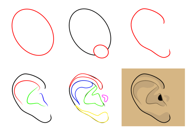 Cartoon people and body parts: ears