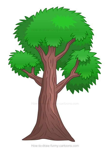 How to Draw A Cartoon Tree