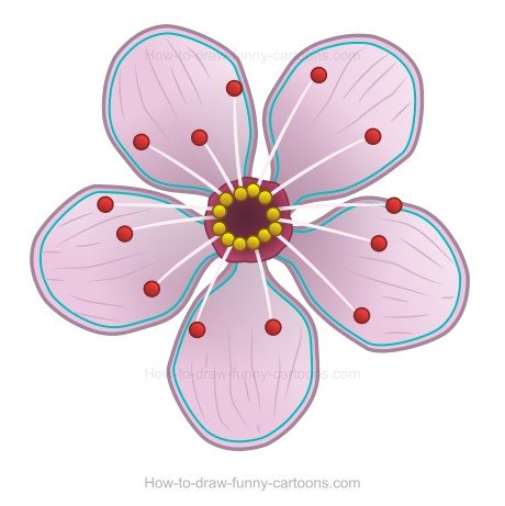 How to Create A Cherry  Blossom Drawing
