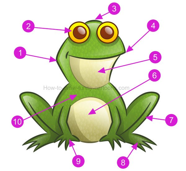 How to draw a frog clip art