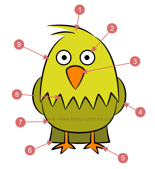 How to draw an illustration of a chicken