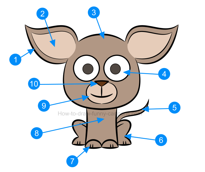 How to draw an illustration of a chihuahua