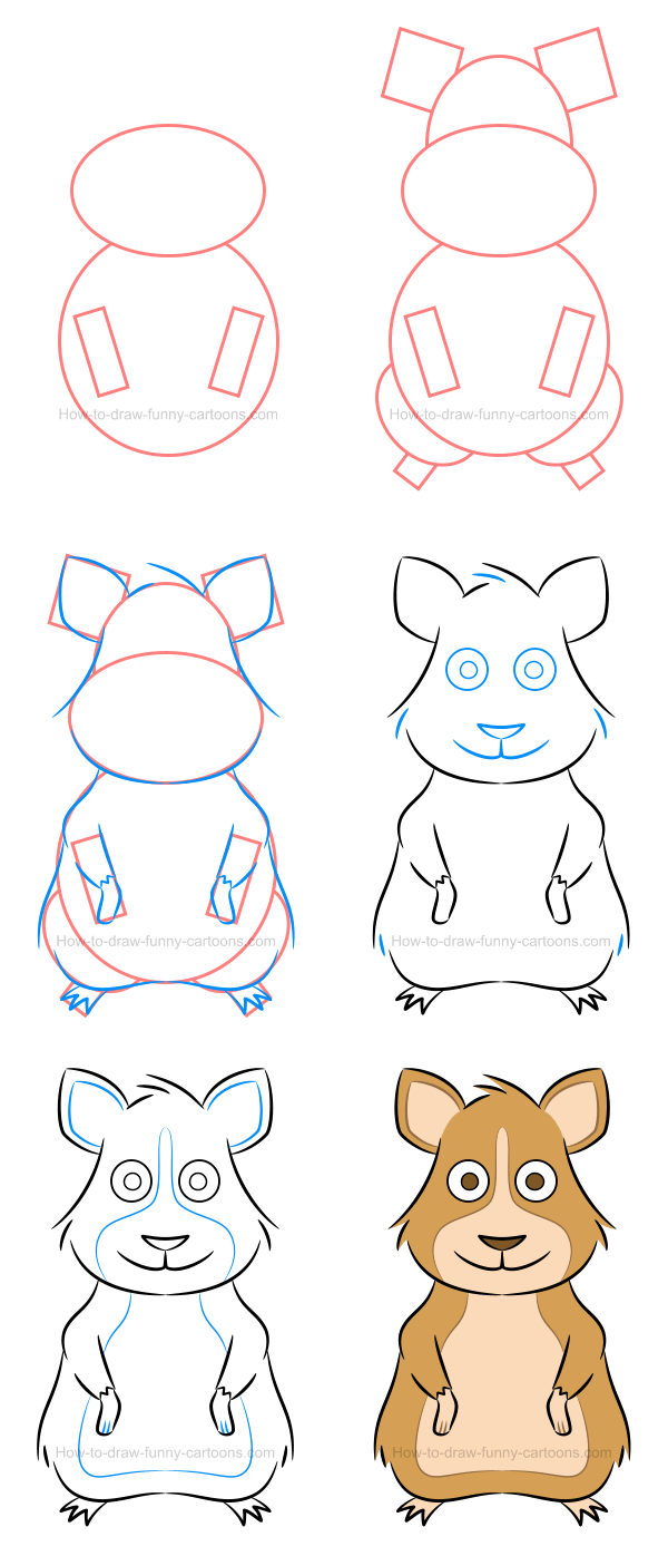How to draw an illustration of a hamster