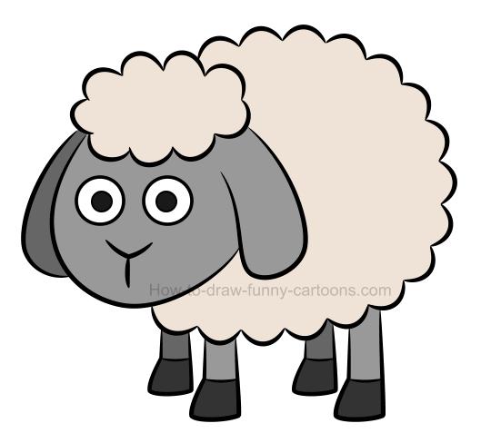 How to draw an illustration of a sheep