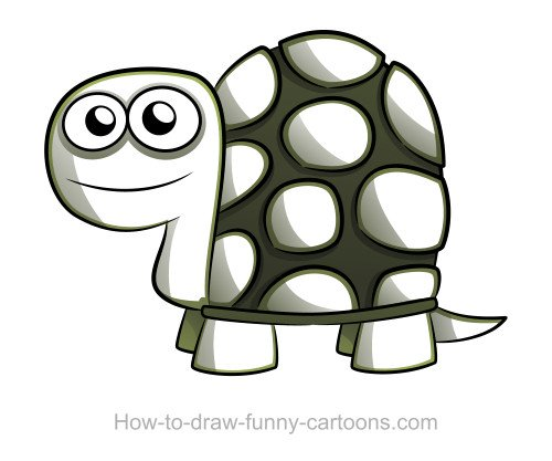 Turtle drawings